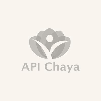 logo-api-chaya